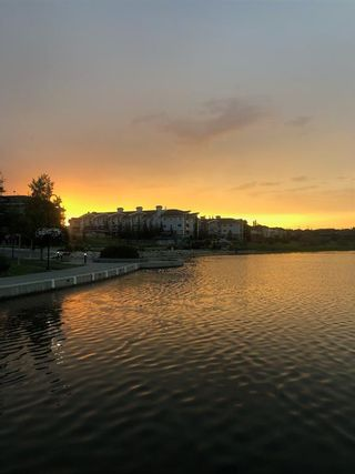 Photo 29: 107 390 Marina Drive: Chestermere Apartment for sale : MLS®# A1097962