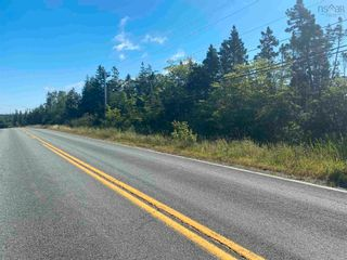 Photo 4: Lot Highway 320 in Pondville: 305-Richmond County / St. Peters & Area Vacant Land for sale (Highland Region)  : MLS®# 202119586
