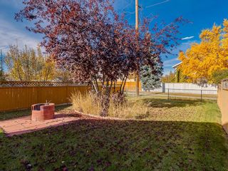 Photo 27: 13 SHAWGLEN Court SW in Calgary: Shawnessy House for sale : MLS®# C4142331