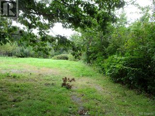 Photo 3: 198 Pleasant Street in St. Stephen: Vacant Land for sale : MLS®# NB062836
