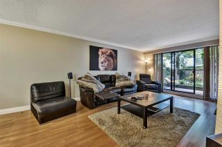 """Photo 12: 104 11957 223 Street in Maple Ridge: West Central Condo for sale in """"Alouette Apartments"""" : MLS®# R2586639"""