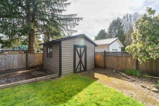 Photo 20: 21816 DONOVAN Avenue in Maple Ridge: West Central House for sale : MLS®# R2560763