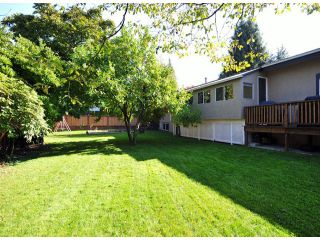 Photo 14: 32263 MARSHALL Road in Abbotsford: Abbotsford West House for sale : MLS®# F1323815