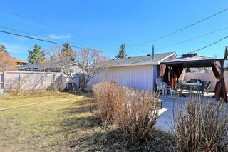 Photo 30: 13108 LAKE CRIMSON Drive SE in Calgary: Lake Bonavista Detached for sale : MLS®# A1093648