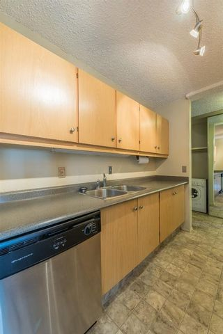 Photo 11: 302 1222 Kensington Close NW in Calgary: Hillhurst Apartment for sale : MLS®# A1056471