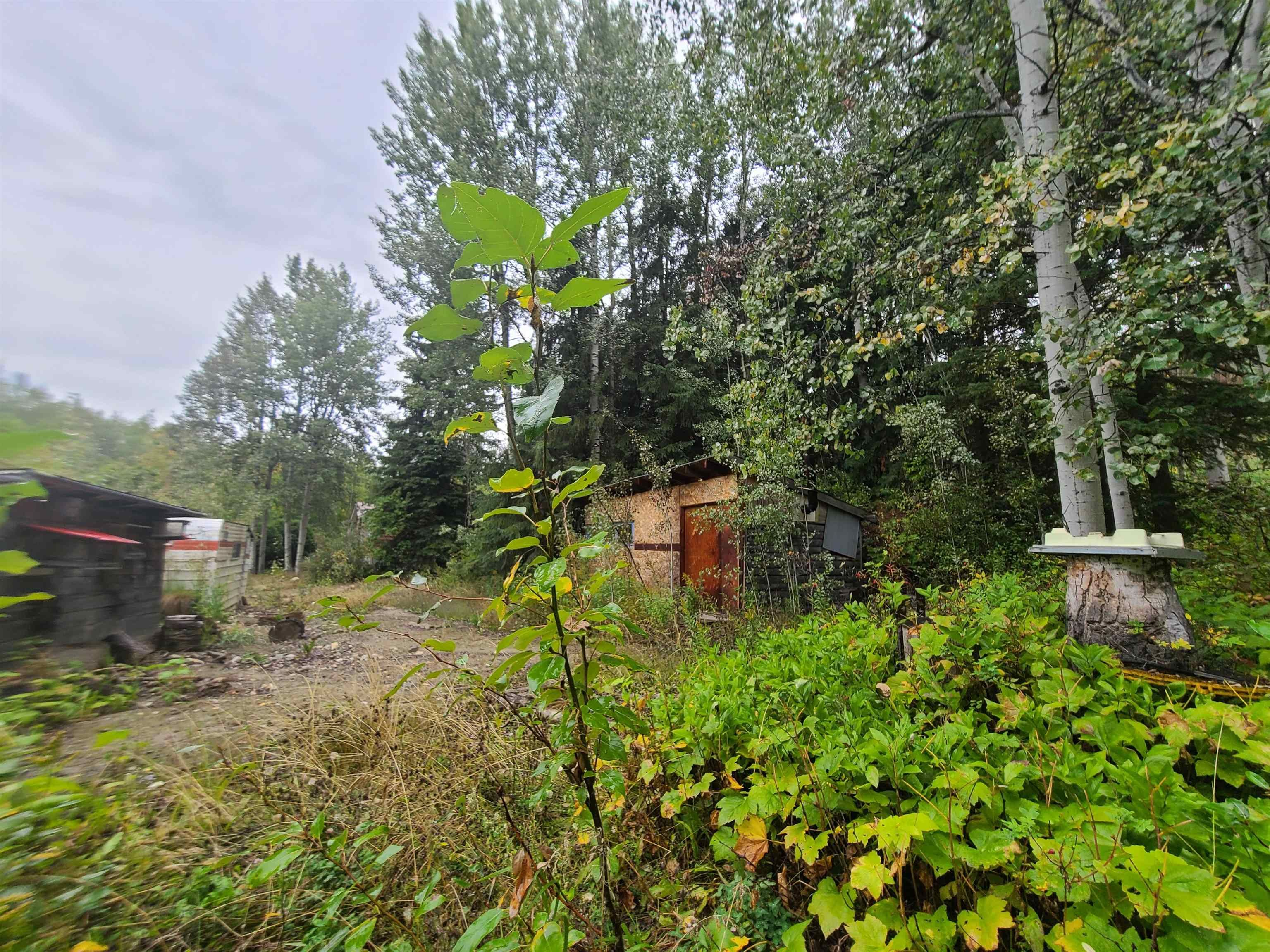Main Photo: 4453 MOUNTAIN VIEW Road in McBride: McBride - Town Land for sale (Robson Valley (Zone 81))  : MLS®# R2616224