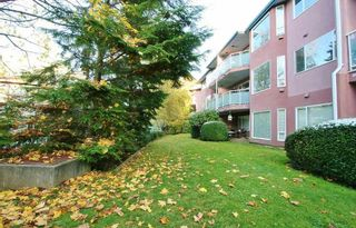 Photo 20: 207 2855 152 STREET in South Surrey White Rock: King George Corridor Home for sale ()  : MLS®# R2220245