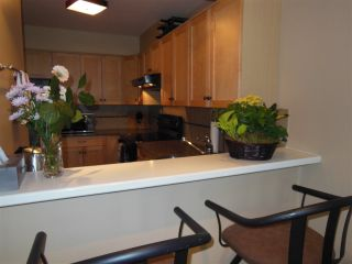"Photo 8: 301 360 E 2ND Street in North Vancouver: Lower Lonsdale Condo for sale in ""Emerald Manor"" : MLS®# R2084102"