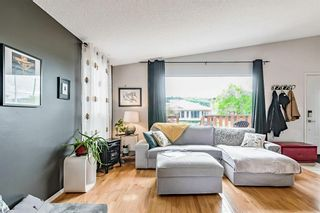 Photo 21: 4536 19 Avenue NW in Calgary: Montgomery Detached for sale : MLS®# A1118171