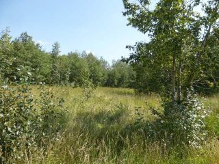 Photo 11: 40 26555  Twp 481: Rural Leduc County Rural Land/Vacant Lot for sale : MLS®# E4258053