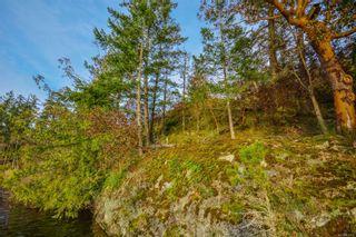 Photo 56: 236 Stevens Rd in : SW Prospect Lake House for sale (Saanich West)  : MLS®# 871772