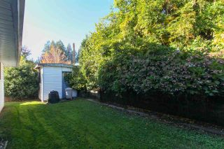 Photo 20: 33495 BEST Avenue in Mission: Mission BC House for sale : MLS®# R2217077