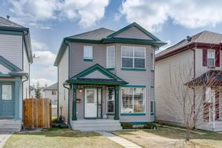 Photo 29: 100 TARINGTON Way NE in Calgary: Taradale Detached for sale : MLS®# C4243849