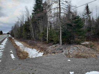 Photo 10: Lots Melrose Country Harbour Road in Country Harbour: 303-Guysborough County Vacant Land for sale (Highland Region)  : MLS®# 202102147