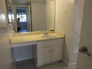 Photo 20: 108 22 Alpine Place: St. Albert Condo for sale : MLS®# E4239339