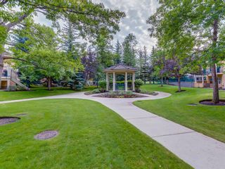 Photo 39: 206 Paliswood Park SW in Calgary: Palliser Semi Detached for sale : MLS®# A1138623