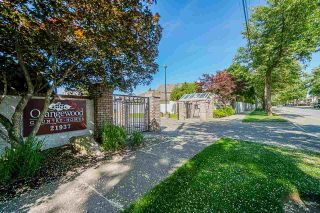 """Photo 1: 403 21937 48 Avenue in Langley: Murrayville Townhouse for sale in """"ORANGEWOOD"""" : MLS®# R2590300"""