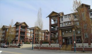 Photo 1: 322 5650 201A STREET in Langley: Langley City Condo for sale : MLS®# R2360178