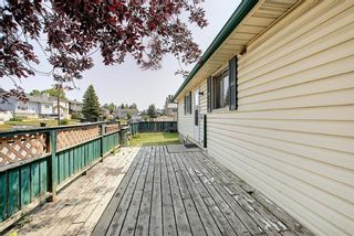 Photo 36: 180 Castledale Way NE in Calgary: Castleridge Detached for sale : MLS®# A1135509