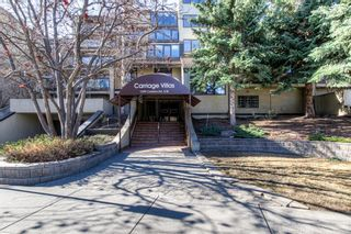 Photo 41: 301 1229 Cameron Avenue SW in Calgary: Lower Mount Royal Apartment for sale : MLS®# A1095141