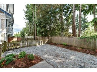 """Photo 5: 60 6533 121ST Street in Surrey: West Newton Townhouse for sale in """"STONEBRAIR"""" : MLS®# F1422677"""