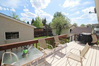 Photo 27: 14 Cedargrove Crescent in Winnipeg: Mission Gardens Residential for sale (3K)  : MLS®# 202011727