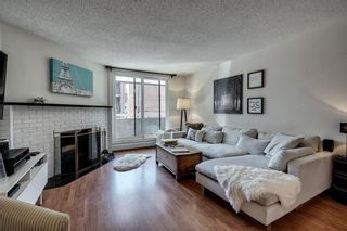 Photo 3: 201 511 56 Avenue SW in Calgary: Windsor Park Apartment for sale : MLS®# C4266284