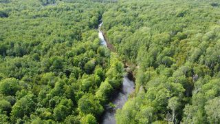 Photo 3: PARCEL A Barneys River Road in Avondale: 108-Rural Pictou County Vacant Land for sale (Northern Region)  : MLS®# 202016062