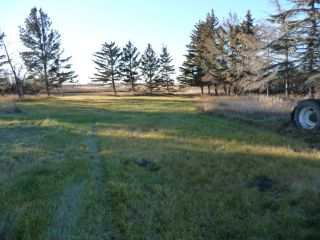 Photo 6: 48017 Range Road 142 in Rural Beaver County: House for sale