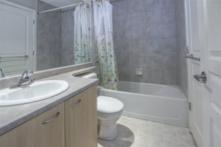 """Photo 7: PH1 7383 GRIFFITHS Drive in Burnaby: Highgate Condo for sale in """"EIGHTEEN TREES"""" (Burnaby South)  : MLS®# R2356524"""