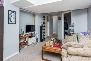 Photo 27: 10411 35 Avenue in Edmonton: Zone 16 House for sale : MLS®# E4246144
