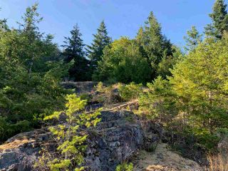 Photo 10: LOT 1 4622 SINCLAIR BAY Road in Garden Bay: Pender Harbour Egmont Land for sale (Sunshine Coast)  : MLS®# R2490916