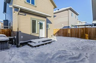 Photo 19: 25 Copperpond Rise SE in Calgary: Copperfield Detached for sale : MLS®# A1067896