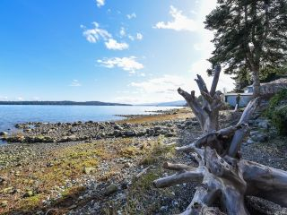 Photo 76: 5668 S Island Hwy in UNION BAY: CV Union Bay/Fanny Bay House for sale (Comox Valley)  : MLS®# 841804