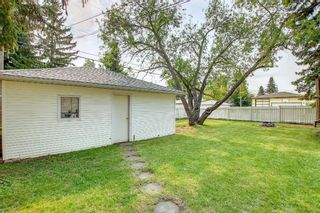 Photo 46: 90 Hounslow Drive NW in Calgary: Highwood Detached for sale : MLS®# A1145127