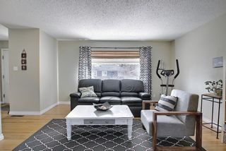 Photo 8: 56 Langton Drive SW in Calgary: North Glenmore Park Detached for sale : MLS®# A1081940
