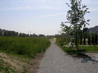 Photo 4: 315 2307 RANGER Lane in FREMONT GREEN SOUTH: Home for sale : MLS®# V1125165