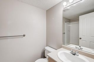 Photo 16: 3209 1620 70 Street SE in Calgary: Applewood Park Apartment for sale : MLS®# A1116068