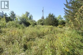 Photo 6: LT 3 SHORE RD in Brock: Vacant Land for sale : MLS®# N5357476