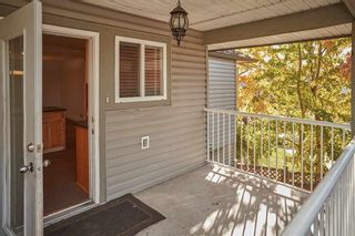 Photo 16: 27229 27 Avenue in Langley: Aldergrove Langley House for sale : MLS®# R2605928