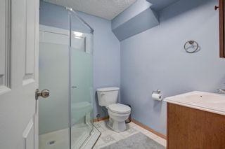 Photo 28: 223 Springborough Way SW in Calgary: Springbank Hill Detached for sale : MLS®# A1114099