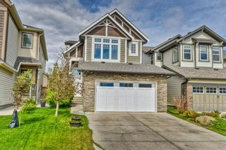 Photo 2: 32 SKYVIEW SPRINGS Gardens NE in Calgary: Skyview Ranch Detached for sale : MLS®# A1118652