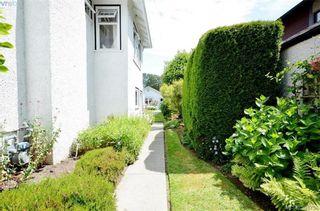 Photo 13: 1377 Hampshire Rd in VICTORIA: OB South Oak Bay House for sale (Oak Bay)  : MLS®# 791349