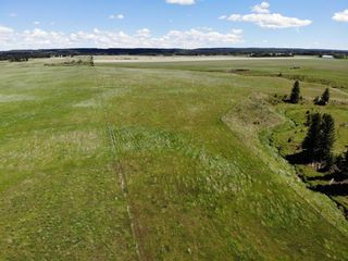Photo 9: Range Road 55: Rural Mountain View County Land for sale : MLS®# A1121014
