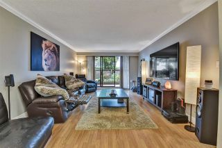 """Photo 11: 104 11957 223 Street in Maple Ridge: West Central Condo for sale in """"Alouette Apartments"""" : MLS®# R2586639"""