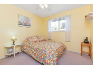 """Photo 33: 65 34250 HAZELWOOD Avenue in Abbotsford: Abbotsford East Townhouse for sale in """"Still Creek"""" : MLS®# R2557283"""