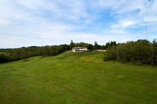 Photo 48: 57223 RGE RD 203: Rural Sturgeon County House for sale : MLS®# E4225400