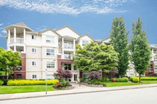 """Photo 3: 426 8068 120A Street in Surrey: Queen Mary Park Surrey Condo for sale in """"MELROSE PLACE"""" : MLS®# R2271350"""