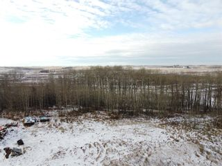 Photo 4: 20-32224 Range Road 22: Rural Mountain View County Land for sale : MLS®# A1046786