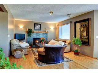 Photo 4: 48 RIVERVIEW Close SE in Calgary: Riverbend House for sale : MLS®# C4019048